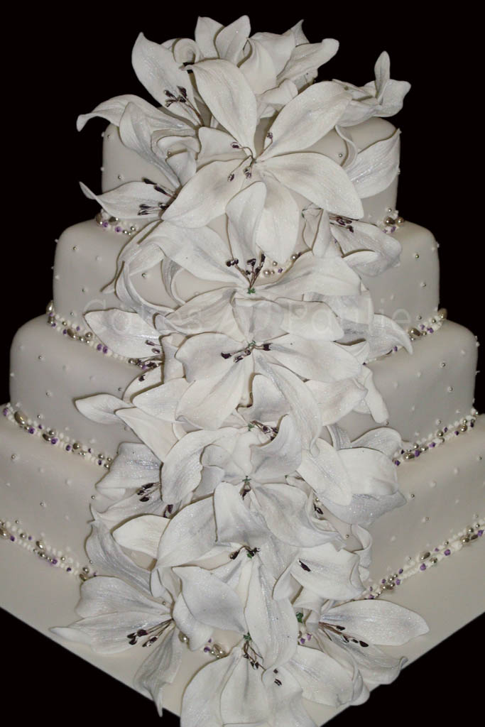 Wedding Cake – Ayodele